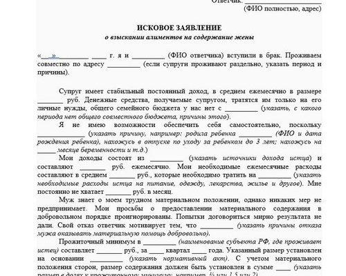 Документ на алименты